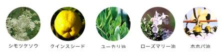 アクネクリアジェリーの植物由来エキス