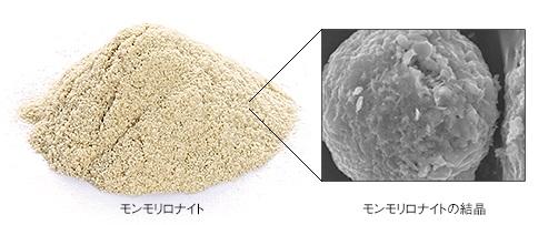 ビーグレンのクレンジング効果のイメージ図解_モンモリロナイトの画像