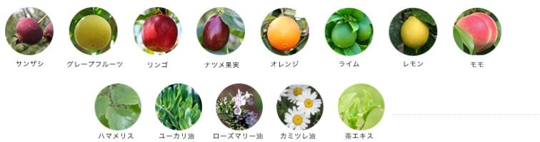リフレッシュスキントナーの植物由来エキス