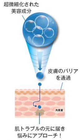 リプロスキン ローションの美容液が角質層に浸透するイメージ図解